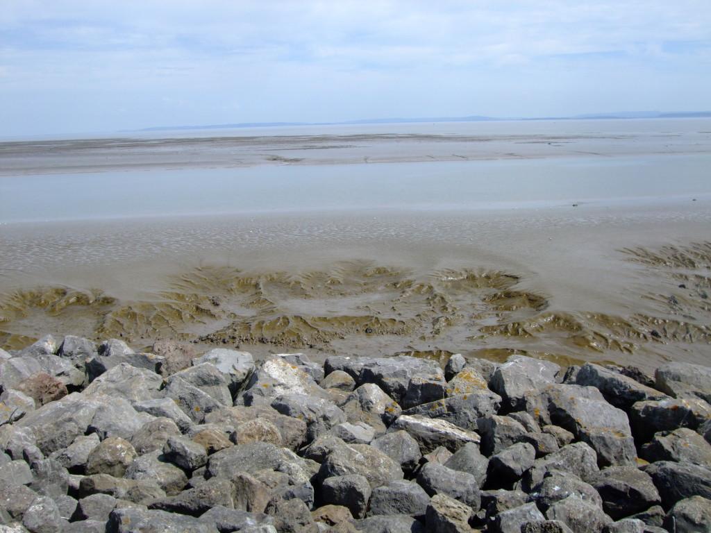 Oszukali nas! Miało być morze. Zostały ślady po Godzilli.